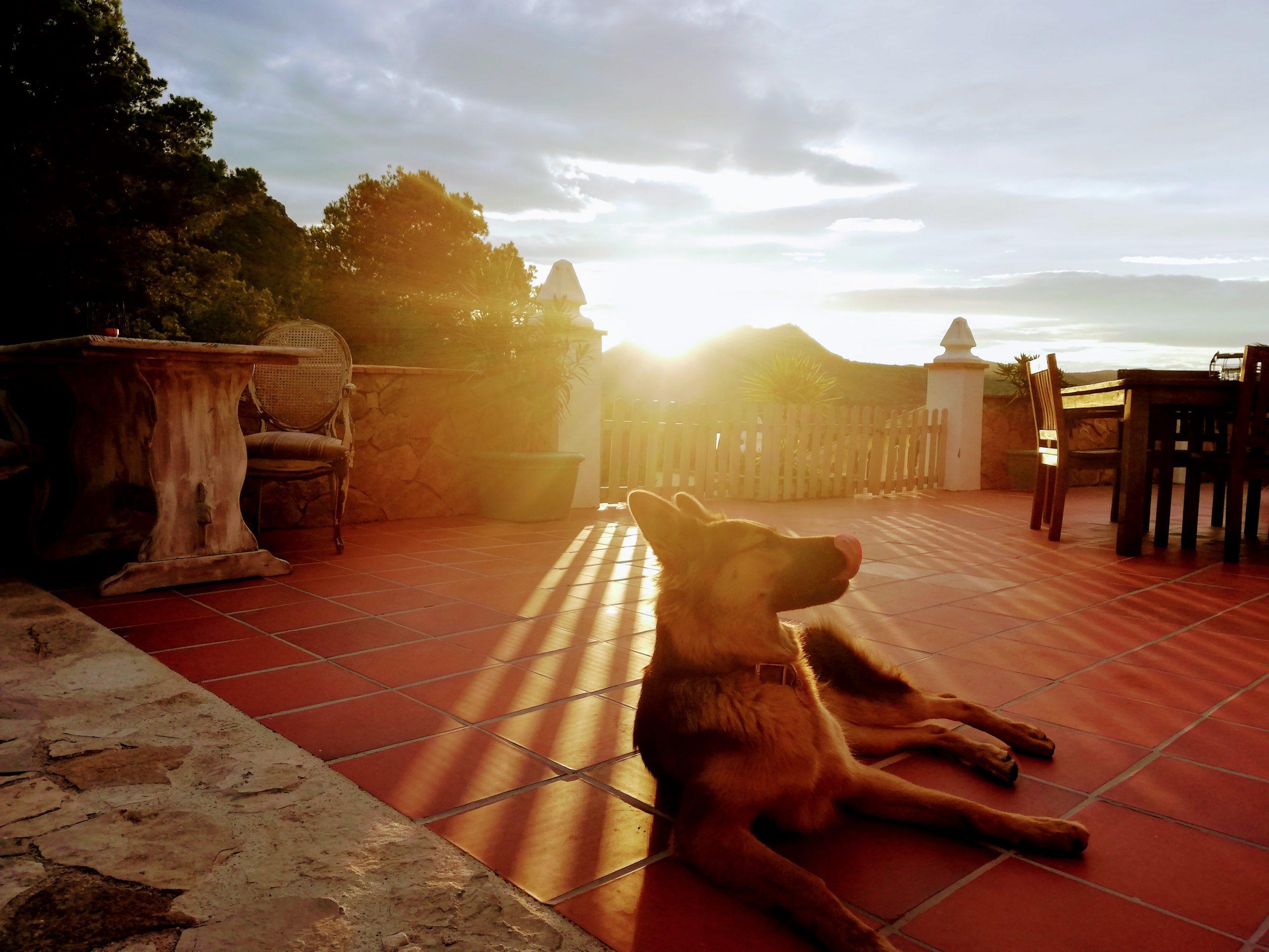 Sunset Casa Tarsan