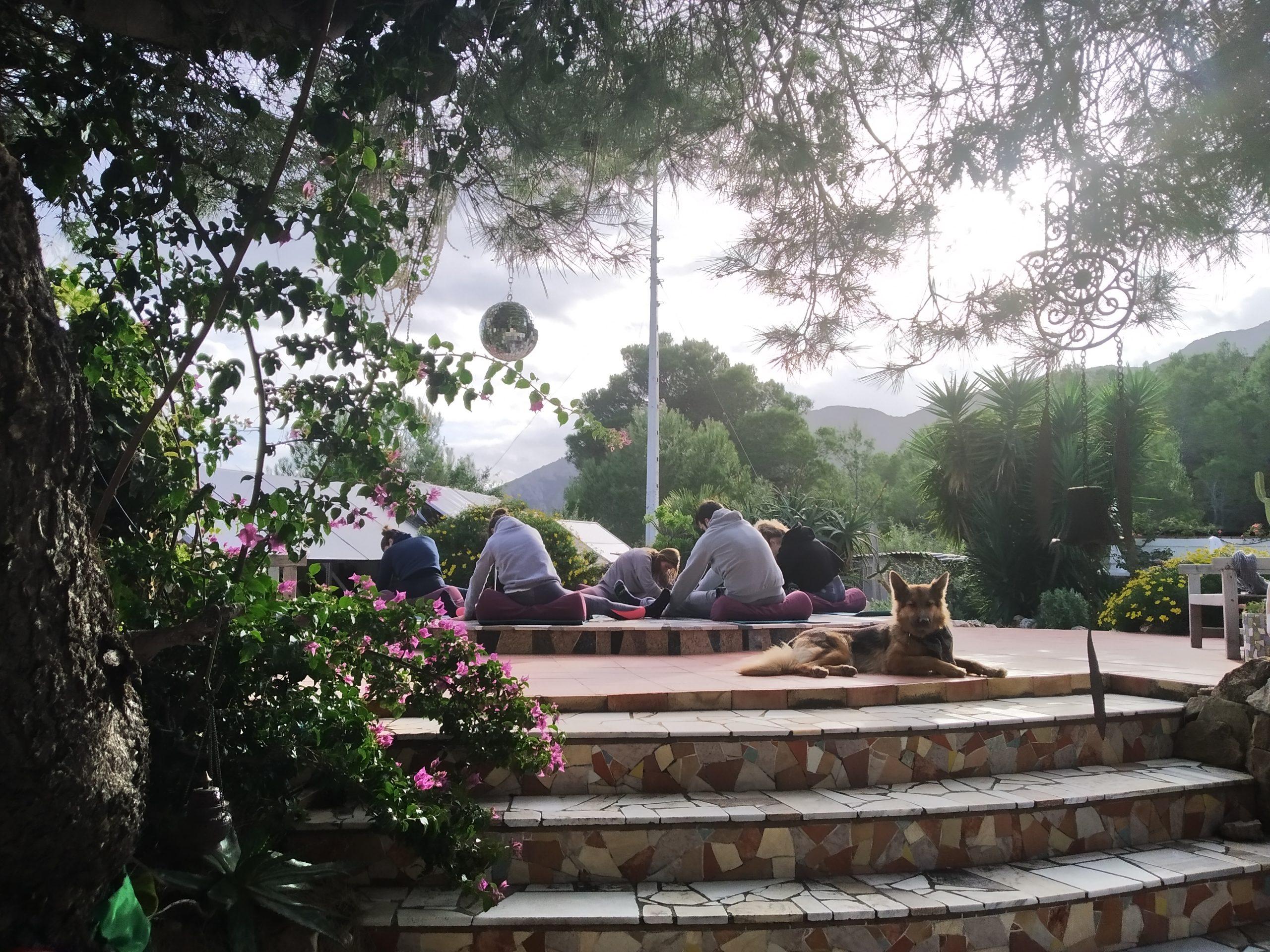 Yin yoga outdoors